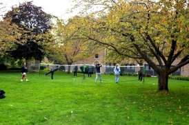 badminton-on-lawn